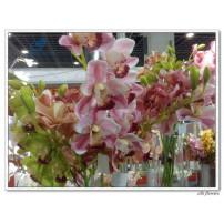 Silk Cymbidium Orchid Flower