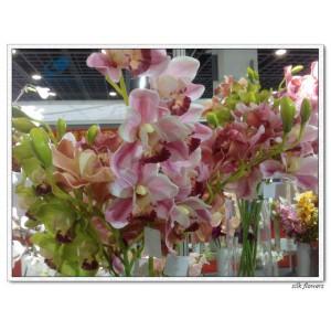 http://www.ls-decos.com/172-815-thickbox/silk-cymbidium-orchid-flower-.jpg