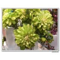 Silk Dahlia Flower