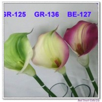 Calla lily Large
