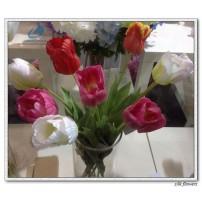 Silk Tulip 3D print