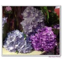 Silk Hydrangea flower