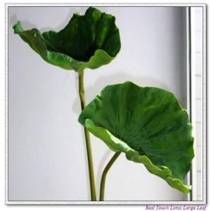 http://www.ls-decos.com/63-352-thickbox/lotus-leafwater-lily-leaf.jpg