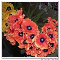 Mini poppy bunch